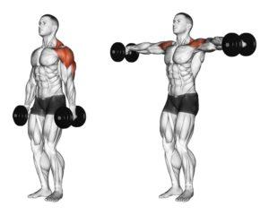 alzate-laterali-con-manubri-per-deltoide-anteriore