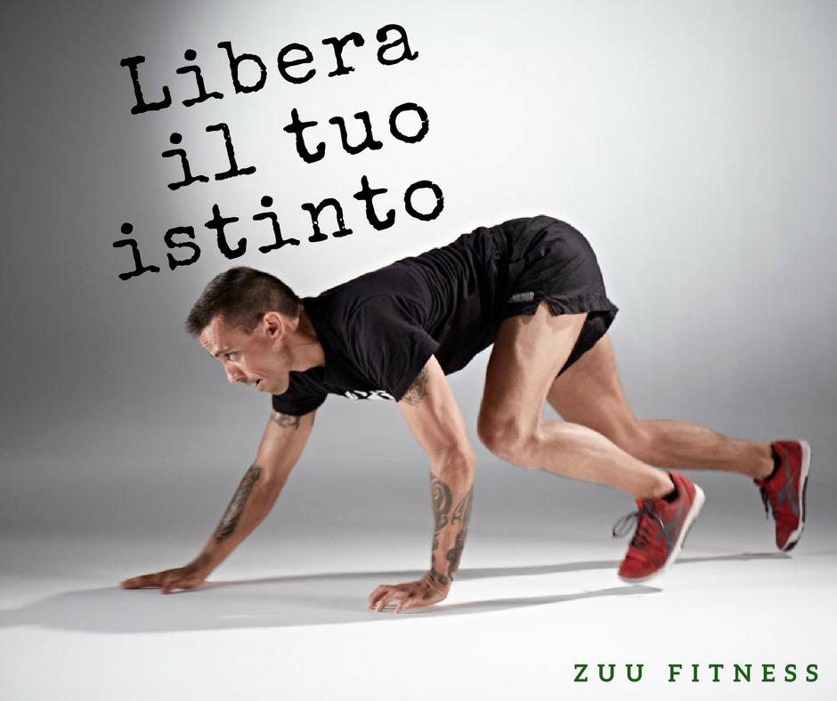 Zuu Fitness